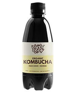 CRAZY COCO LUOMU KOMBUCHA INKIVÄÄRI 330ML