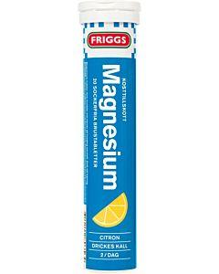 FRIGGS MAGNESIUM PORETABLETTI 20KPL