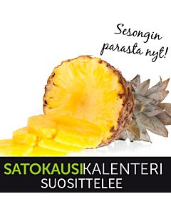 LUOMU ANANAS 1KPL NOIN 1.0-1,4KG COSTA RICA