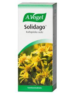 SOLIDAGO KULTAPIISKU-UUTE 50ML